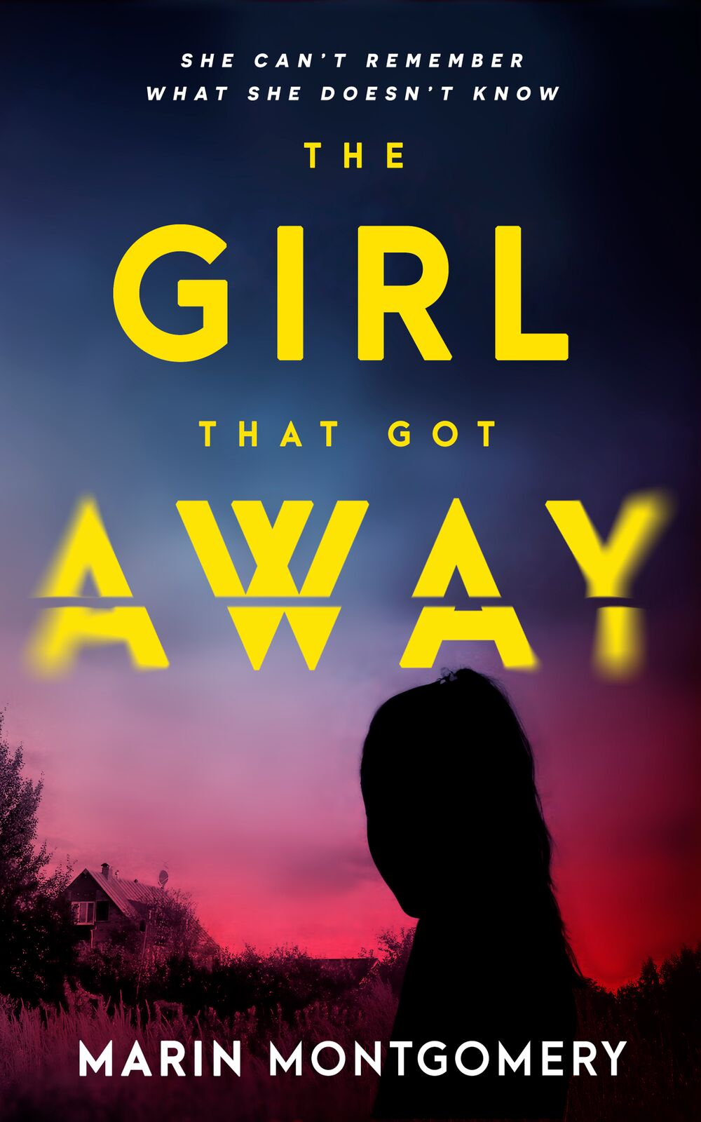 The Girl That Got Away