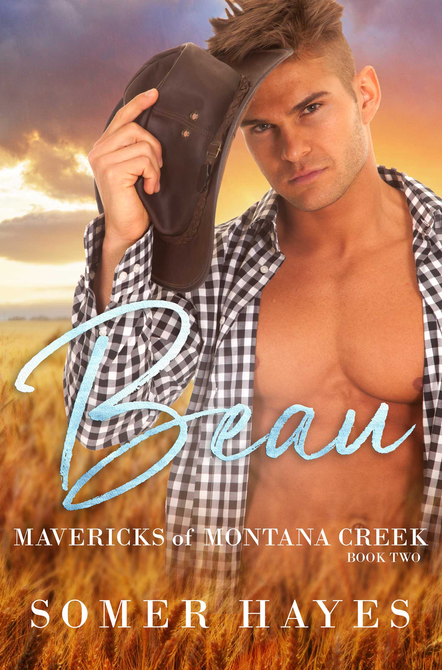 The Mavericks of Montana – Beau – Book 2